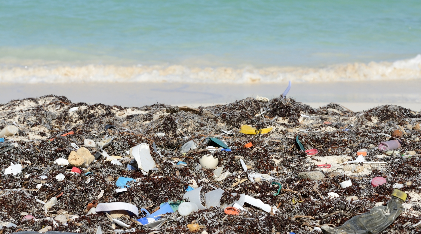 Another Garbage Beach