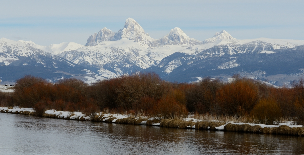 Tetons March 2014